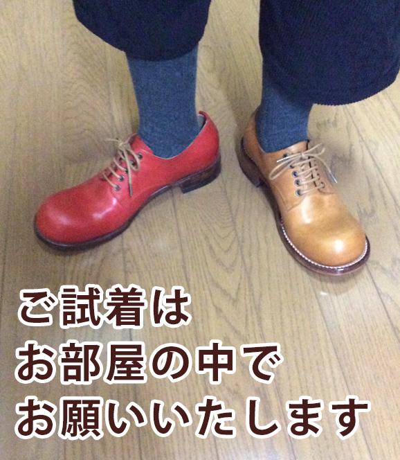 靴のサンプル例2